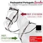 Portugees Hoofdstel Escola